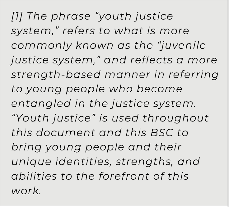 Use of Youth Justice instead of Juvenile Justice as a term